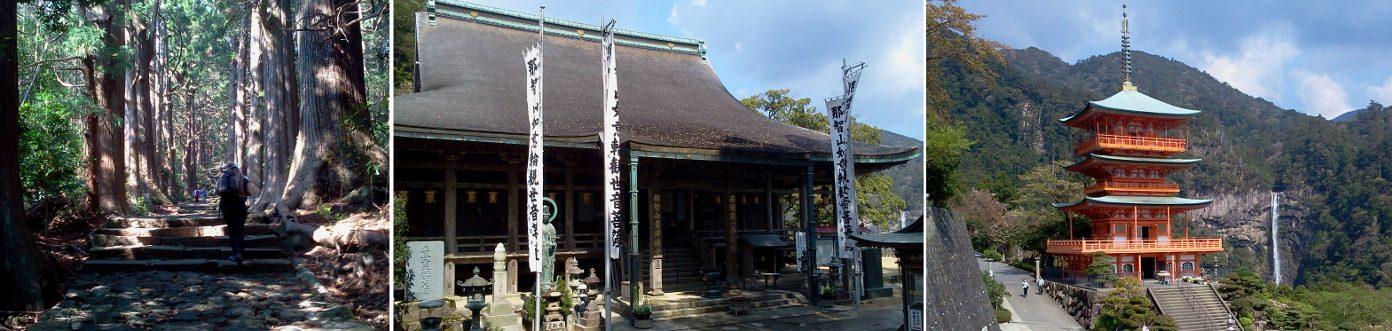 Katsura2.jpg
