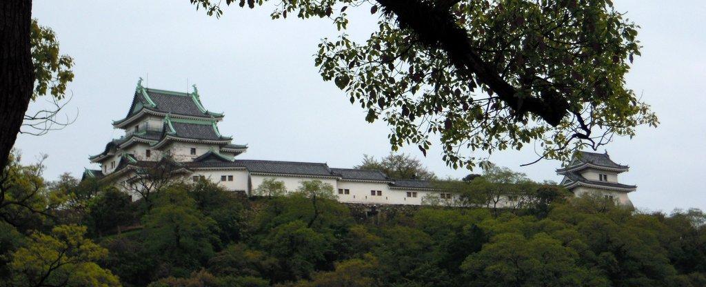 Wakayama1.jpg